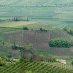 14. April: Das Weindorf Missian mit seinen steilen Weinhängen am Kirchhügel. Ein Teil dieser Weinberge gehört zu unserem Bauernhof.