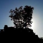 23. Oktober: Der Wilde-Mann-Bühel im Nachmittagslicht.