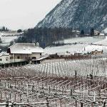 16. Jänner 2013: Blick von der Terrasse auf die leicht verschneite Landschaft.