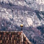 17. November: Gute getarnt: Das Dach des Justinakrichleins vor dem Gantkofel.