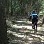 2. März: Erste Biketour des Jahres im Montiggler Wald