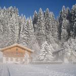 Ein sonniger Wintertag 2010