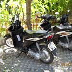 """Unser """"Motorrad"""" auf Koh Samui"""