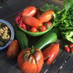 Domaine de Joreau - récolte du potager