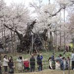 4月4日 ハナ花はな花 ヒト人ひと人ヒトひとヒト人