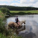 Abkühlung für Pferd...