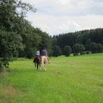 Auf der Wiese am Grenzbach