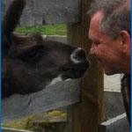 Besuch bei den Lamas