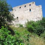 Burgruine Leuchtenberg