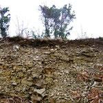 Geologischer Aufschluss