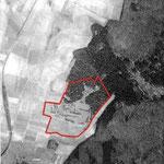 Luftbild aus 1999