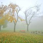 Park Sobieskiego