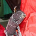 """Das Eselein, gespielt von der Marionettenbühne """"Die Märchentruhe"""""""