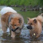 Hiron wagt sich mit Papa Azou ins Wasser