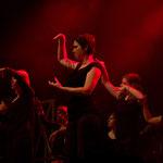 """""""Indignez-vous"""" en langue des signes - HK & Les Saltimbanks - Rencontres Brel 2013"""