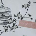 Baumwolle Au Maison: Birdcage charcoal / ice green - weißgrundig - METERWARE