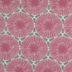 besch. Baumwolle - Pusteblume pink mit grau-grünem und weißen Untergrund - Blumen-DM ca. 3,5 cm - RESTMENGE