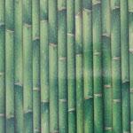 Wachstuch - Bambus