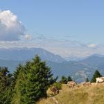 Campon, Monte Avena