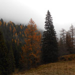 Val Campelle, Trento
