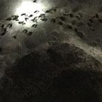 Batman's Höhle