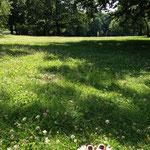 Pause im Tiergarten
