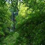 Das ist er: Der Uracher Wasserfall
