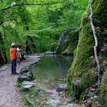 Vorbei ging es auch am Gütersteiner Wasserfall.