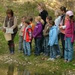 Alois Danner informierte die Kinder über das Leben der Frösche, Kröten und Molche