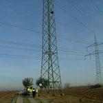 Das ist der Masten mit montierter Turmfalken-Nisthilfe