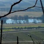 Blick auf den Hohenhaslach See 17.02.2008