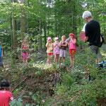 Kinder beim Dachsbau, der sich über eine Fläche von über 150 m2 erstreckt.