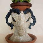 白羊鉢 1998年