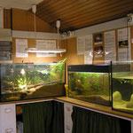 Die Weiherhütte - Aquarien
