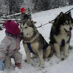 Maya und Rocky im Schnee