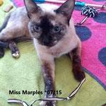 Miss Marples