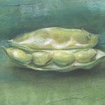 「そら豆」 パステル  アクリル絵具