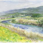水彩画 菊池川と菜の花