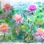 水彩画 睡蓮