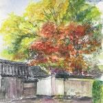 水彩画 京都の紅葉