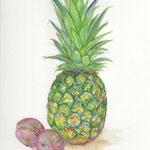 水彩画 パイナップルとソルダム