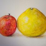 水彩画 りんごと文旦