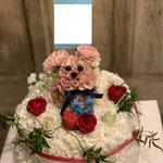犬+ケーキ 20,000円~