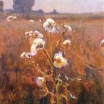 Bodiaki-Stanislawski, Jan  1860-1907