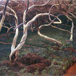 Stare jablonie-Ruszczyc, Ferdynand  1870-1936