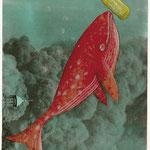 Wal mit Botschaft