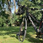 Beine - Cooldown: Eine Runde in den Stadtpark mit guter Lektüre.