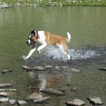 Aktiv im Wasser