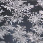 Schneekristalle an meiner Fensterscheibe