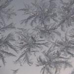 Eiskristalle am Fenster
